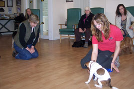 Trudy Swann's dog training class